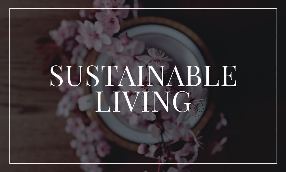Sustainable Living | Createbeautifulthings